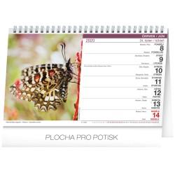 Stolní kalendář Život motýlů - motýľov 2020