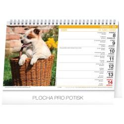 Stolní kalendář Psi - Psy 2020