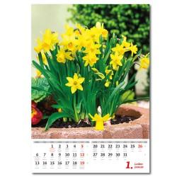Nástěnný kalendář 2020 Květiny/Kvetiny