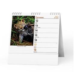 Stolní kalendář 2021 IDEÁL - Zvířátka