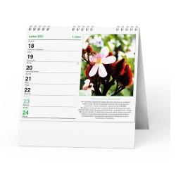 Stolní kalendář 2021 IDEÁL - Léčivé rostliny