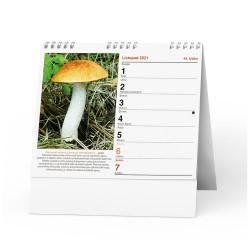 Stolní kalendář 2021 IDEÁL - Houbařský kalendář