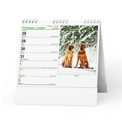 Stolní kalendář 2021 IDEÁL - Pes - věrný přítel