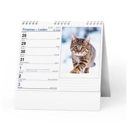 Stolní kalendář 2021 IDEÁL - Kočky