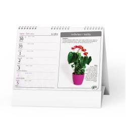 Stolní kalendář 2021 Pokojové květiny