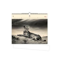 Nástěnný dřevěný kalendář 2021 - Lioness