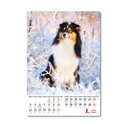 Nástěnný kalendář 2021 - Pejskové/Psíčkovia
