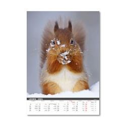 Nástěnný kalendář 2021 - Myslivecký kalendář
