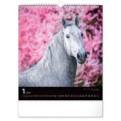 Nástěnný kalendář 2021 Koně