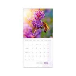 Nástěnný poznámkový kalendář 2021 Provence, voňavý