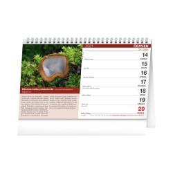 Stolní Houbařský kalendář 2021