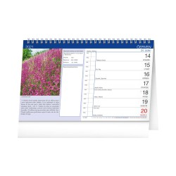 Stolní Meteorologický kalendář 2021 s Dagmar Honsovou