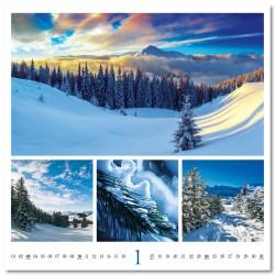 Nástěnný kalendář 2021 - Colours of nature