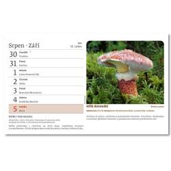 Stolní kalendář 2021 - Na houbách
