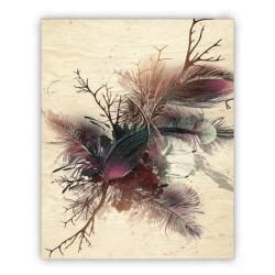 Obraz - Feathers