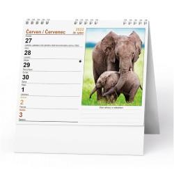 Stolní kalendář 2022 IDEÁL - Zvířátka z celého světa
