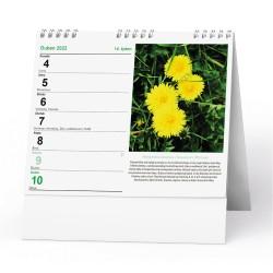 Stolní kalendář 2022 IDEÁL - Léčivé rostliny