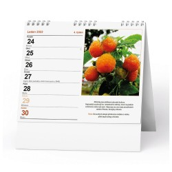 Stolní kalendář 2022 IDEÁL - Zahrádkářský kalendář