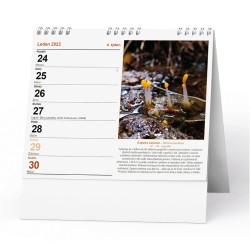 Stolní kalendář 2022 IDEÁL - Houbařský  kalendář