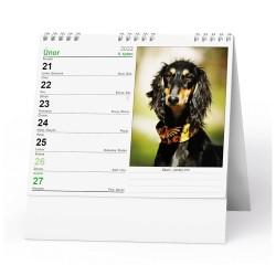Stolní kalendář 2022 IDEÁL - Pes - věrný přítel /s psími jmény