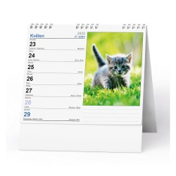 Stolní kalendář 2022 IDEÁL - Kočky /s kočičími jmény