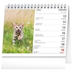 Stolní kalendář 2022 Kočky - se jmény koček