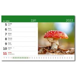 Stolní kalendář 2022 - Naše příroda