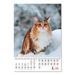 Nástěnný kalendář 2022 - Kočičky/Mačičky