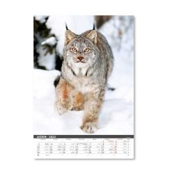 Nástěnný kalendář 2022 - Myslivecký kalendář