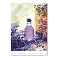 Nástěnný kalendář 2022 - Provence