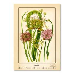 Nástěnný kalendář 2022 - Herbarium