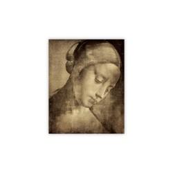 Obraz - Da Vinci