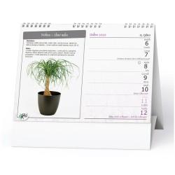 Stolní kalendář 2020 Pokojové květiny