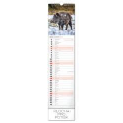 Nástěnný kalendář 2020 Lesní zvěř - Lesná zver - s českými a slovenskými jmény
