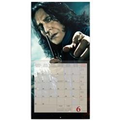 Nástěnný kalendář 2020 Harry Potter
