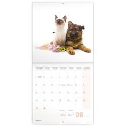 Nástěnný kalendář 2020 Young love